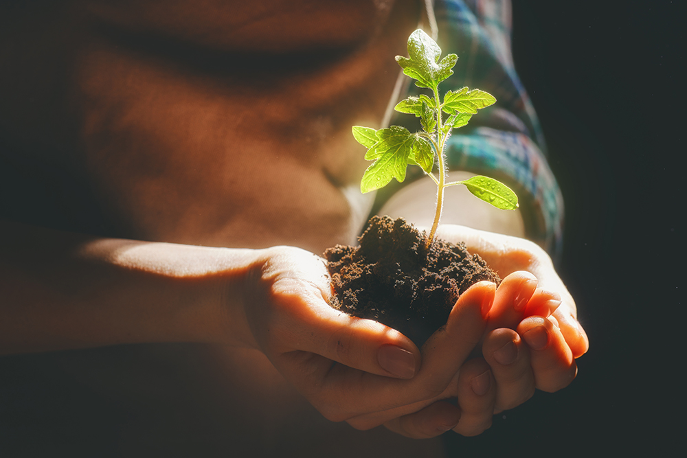 What Is Personal Growth?
