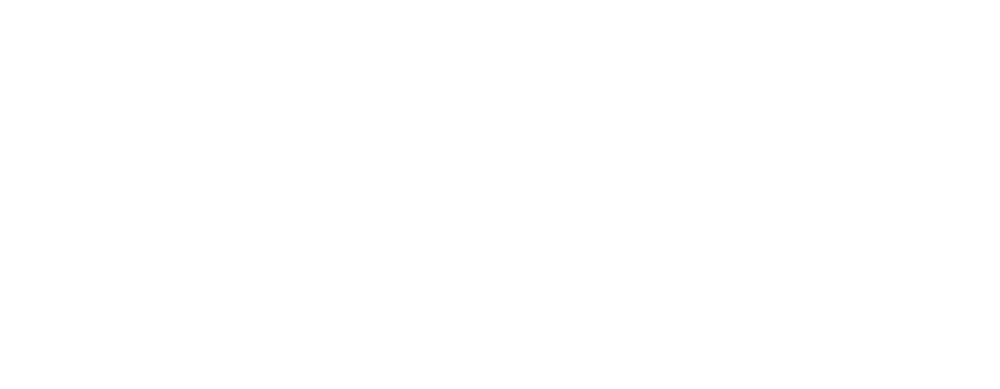 Excellence Performance Coaching